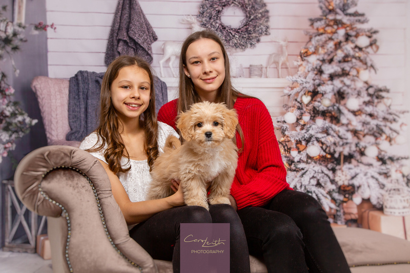 Christmas mini sessions in Aberdeenshire