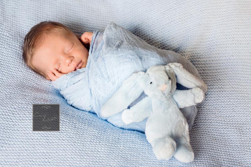 Newborns by Carol Leith